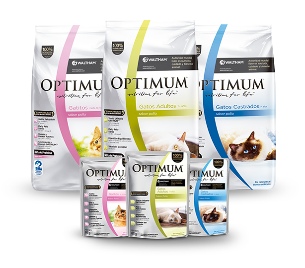 Alimento Super Premium para Gatos Optimum