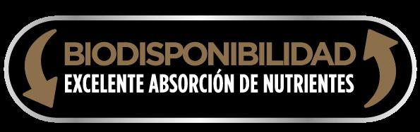 Biodisponibilidad
